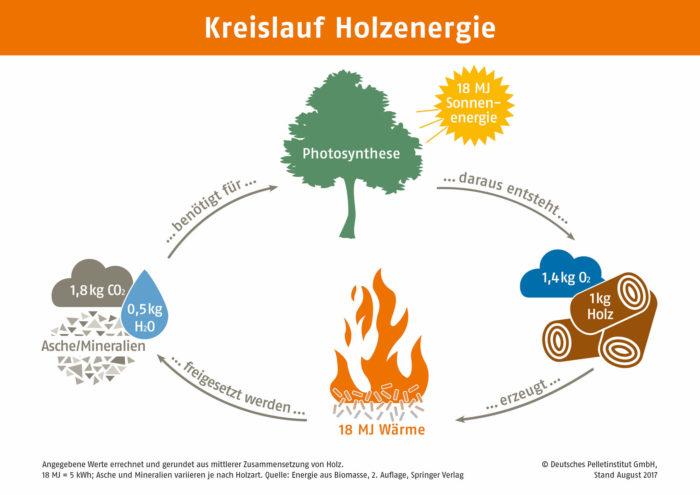 Kreislauf Holzenergie DEPI Grafik Kreislauf Holzenergie A3 web