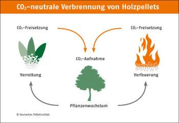 CO2 neutrale Verbrennung von Holzpellets DEPI CO2 Kreislauf 1