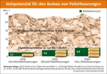 Verfgbares Holzpotenzial fr den Ausbau von Pelletfeuerungen DEPI Holzpotenzial 2019